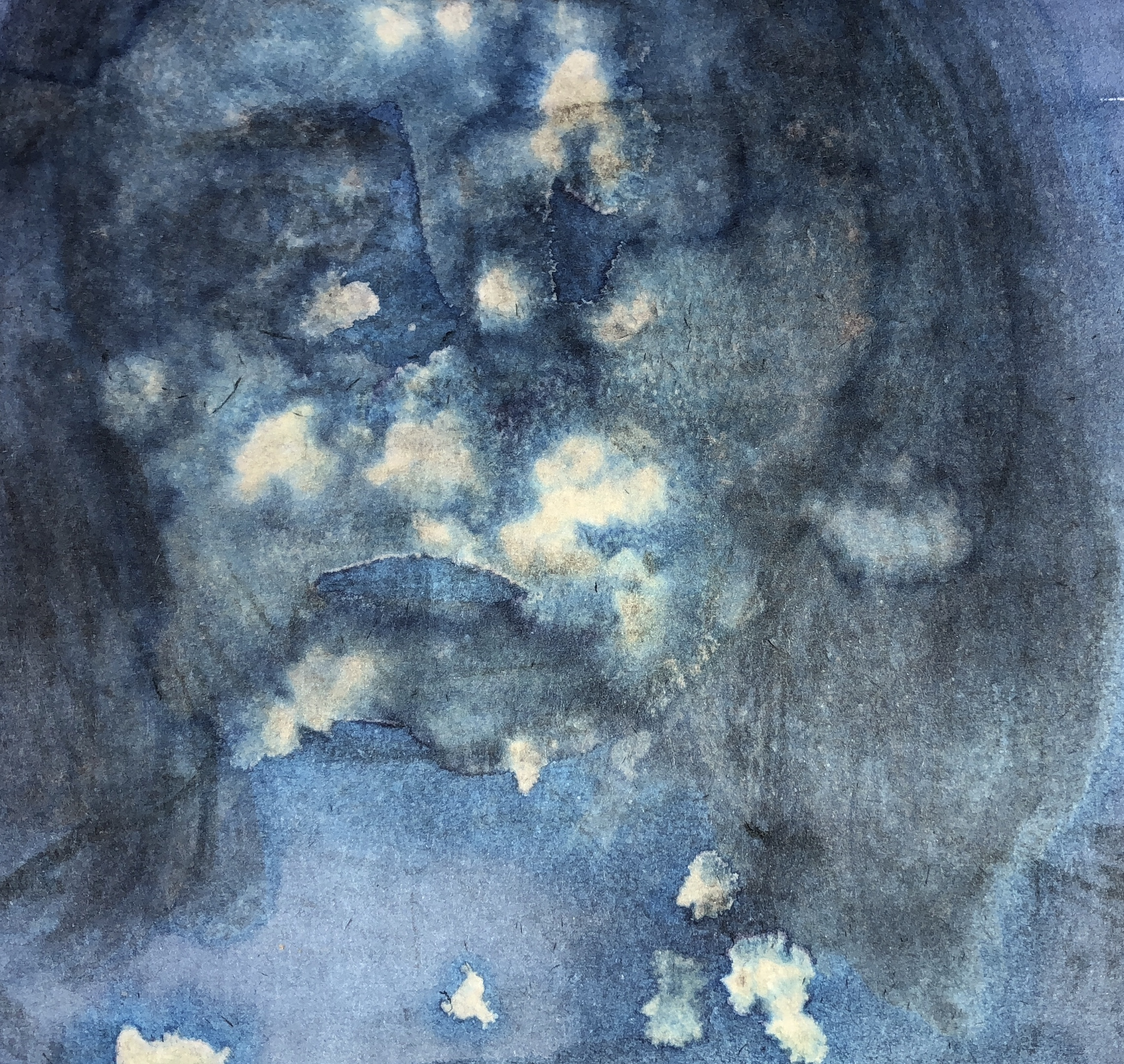 ink and cyanotype