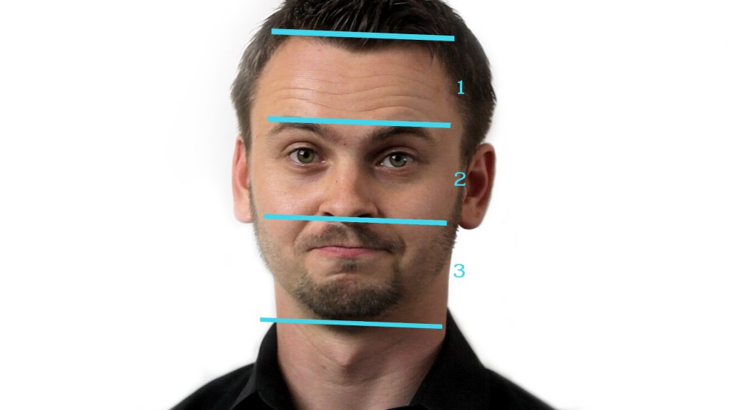 measurements of the head